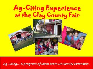 Ag-Citing Experience  at the Clay County Fair