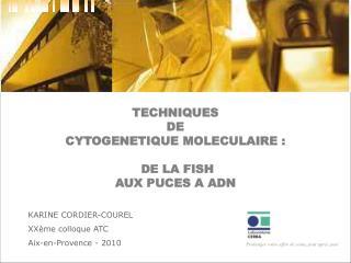 TECHNIQUES  DE  CYTOGENETIQUE MOLECULAIRE :  DE LA FISH  AUX PUCES A ADN