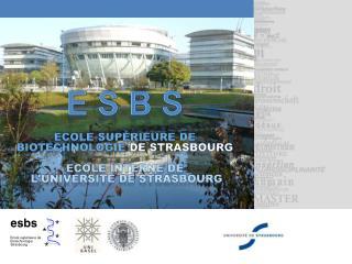 E S B S Ecole Supérieure de Biotechnologie  de Strasbourg Ecole interne de  l'université de  strasbourg