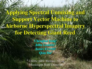 Applying Spectral Unmixing and Support Vector Machine to Airborne Hyperspectral Imagery for Detecting Giant Reed