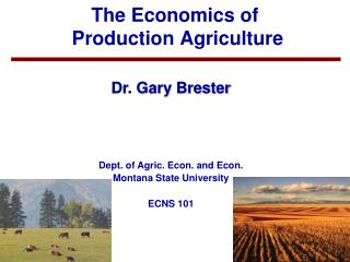 The Economics of Production Agriculture