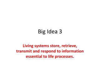 Big Idea 3