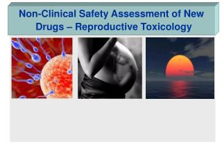 Non-Clinical Safety Assessment of New Drugs – Reproductive Toxicology