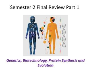 Semester 2 Final Review Part 1