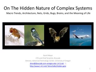 On The Hidden Nature of Complex Systems Macro Trends, Architecture , Nets, Grids, Bugs, Brains, and the Meaning of Life