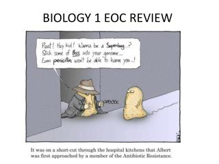 BIOLOGY 1 EOC REVIEW