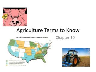 Agriculture Terms to Know
