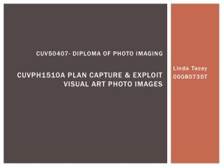Cuv50407- diploma of photo imaging cuvph1510a plan capture & exploit visual art photo images