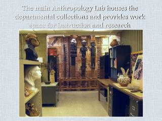 The main Anthropology Lab houses the departmental collections and provides work space for instruction and research