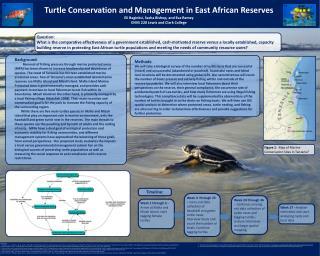 Turtle Conservation and Management in East African Reserves Eli  Baginksi , Sasha Bishop, and Eva Ramey ENVS 220 Lewis