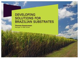 Developing  Solutions for  Brazilian substrates