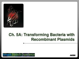 Ch. 5A: Transforming Bacteria with Recombinant Plasmids