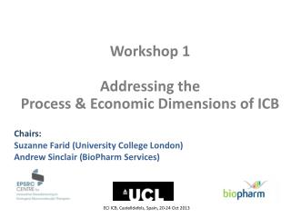 Workshop 1  Addressing the  Process & Economic Dimensions of ICB