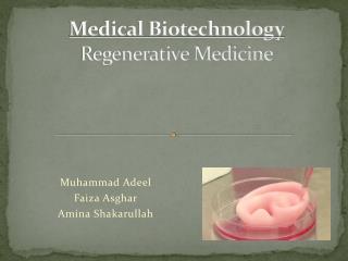 Medical Biotechnology Regenerative Medicine