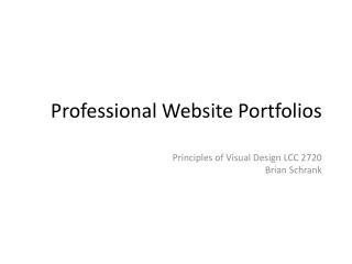 Professional Website Portfolios