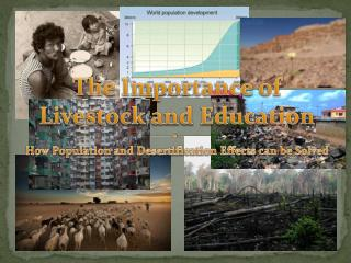 The Importance of  Livestock and  Education