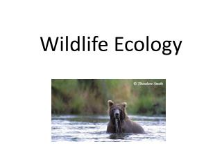 Wildlife Ecology
