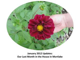 January 2012  Updates:  Our Last Month in the House in Mortlake