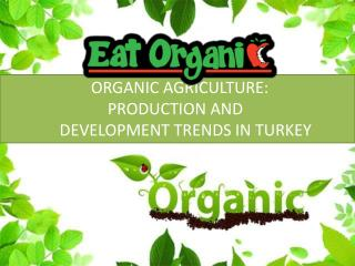 ORGANIC AGRICULTURE:                           PRODUCTION AND                DEVELOPMENT TRENDS IN TURKEY
