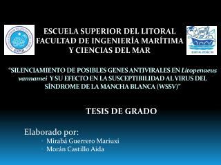 TESIS DE GRADO Elaborado por: Mirabá  Guerrero  Mariuxi Morán Castillo Aida
