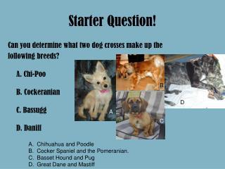 Starter Question!