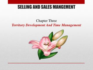 SELLING  AND  SALES MANGEMENT Chapter  Three Territory Development And Time Management