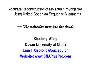 Accurate Reconstruction of Molecular Phylogenies Using United Codon-aa Sequence Alignments — The molecular clock has tw