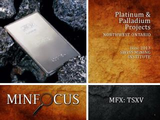 Platinum & Palladium  Projects