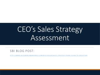 CEO's Sales Strategy Assessment