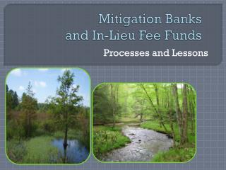 Mitigation Banks  and In-Lieu Fee Funds