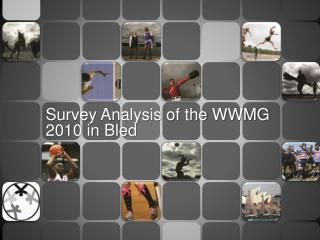 Survey Analysis of the WWMG  2010 in Bled