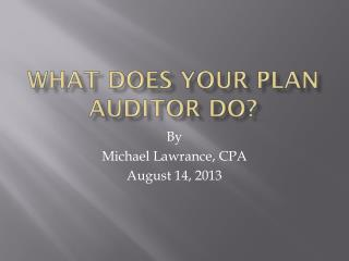 What does your Plan Auditor Do?