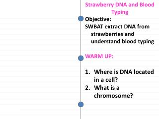 Objective: SWBAT extract DNA from strawberries and understand blood typing WARM  UP : Where is DNA located in a cell? W