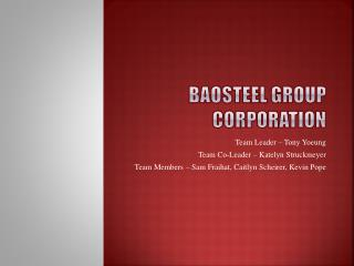Baosteel  Group Corporation