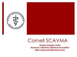 Cornell SCAVMA