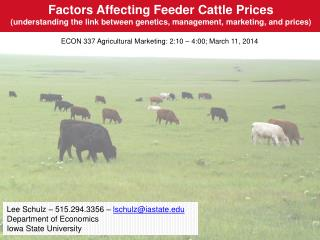 Factors Affecting Feeder Cattle Prices (understanding the link between genetics, management, marketing, and prices)