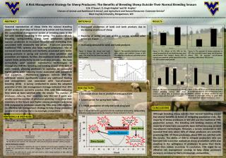 A  Risk Management Strategy  for  Sheep Producers :  The Benefits  of  Breeding Sheep Outside  T heir Normal Breeding