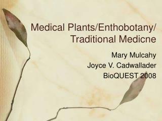 medical plantsenthobotany traditional medicne