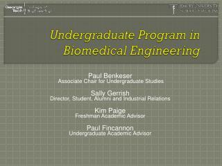 Undergraduate Program in Biomedical Engineering