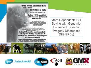 More Dependable Bull Buying with Genomic-Enhanced Expected Progeny Differences (GE-EPDs)