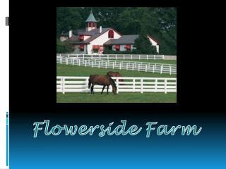 Flowerside Farm