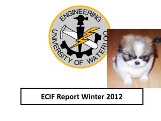 ECIF Report Winter 2012
