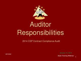 Auditor Responsibilities