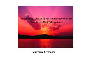 Courtroom Demeanor