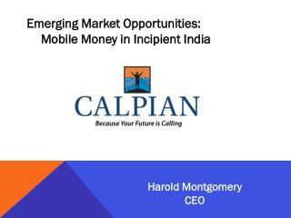 Emerging Market Opportunities: Mobile Money in Incipient India