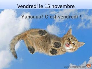 Vendredi  le 15  novembre