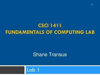CSCI 1411  Fundamentals of Computing Lab