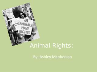 Animal Rights: