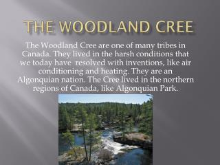 The Woodland Cree