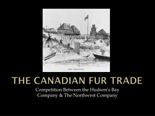 The Canadian Fur Trade